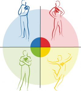Insights Discovery Four Energy Types